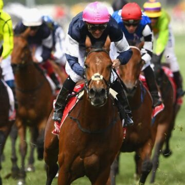 Melbourne Cup to be held behind closed doors as crowds barred from Flemington