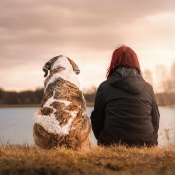 Are Australia's Older Pets Getting What They Need?