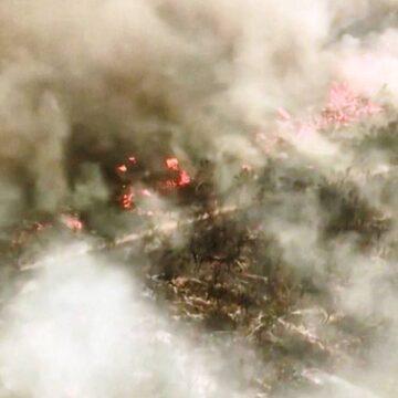 Australia's Fraser Island residents told to leave immediately due to bushfire