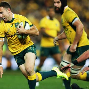 Wallabies' Nic White out of France series