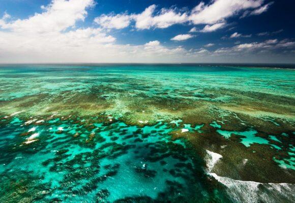 Barrier Reef stays off UN 'in danger' list